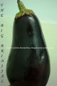 The Big Fat Brinjal - ready to roast